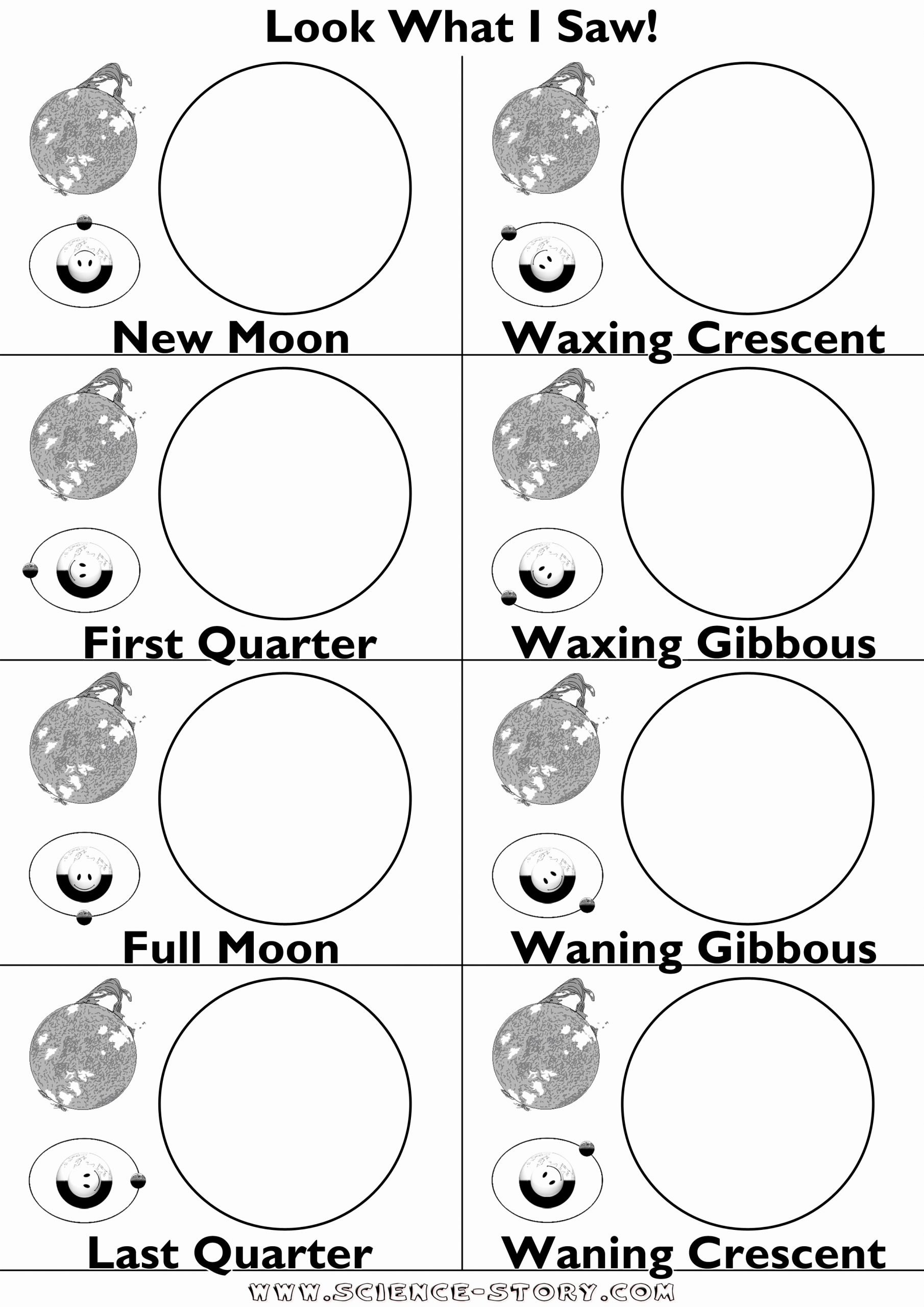 Moon Phases Worksheet 4th Grade Inspirational Phases the Moon with oreos Worksheet