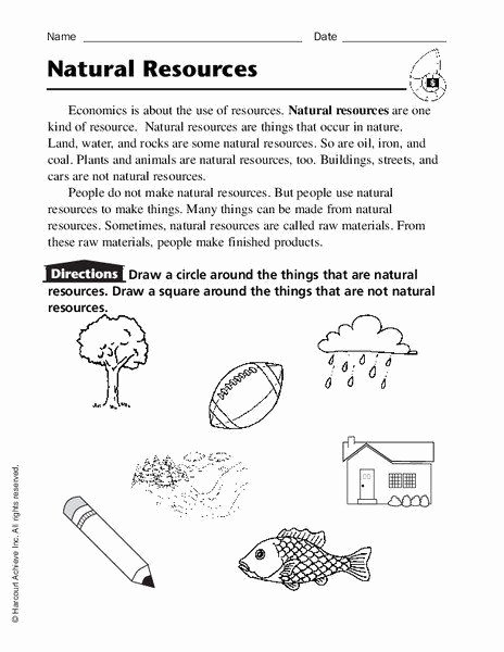 Natural Resources Worksheets 3rd Grade Best Of Natural Resources Worksheets 3rd Grade Natural Resources