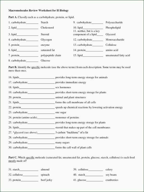 Organic Molecules Worksheet Answer Key Kids organic Molecules Worksheet Answer Key Inspirational 14 Best
