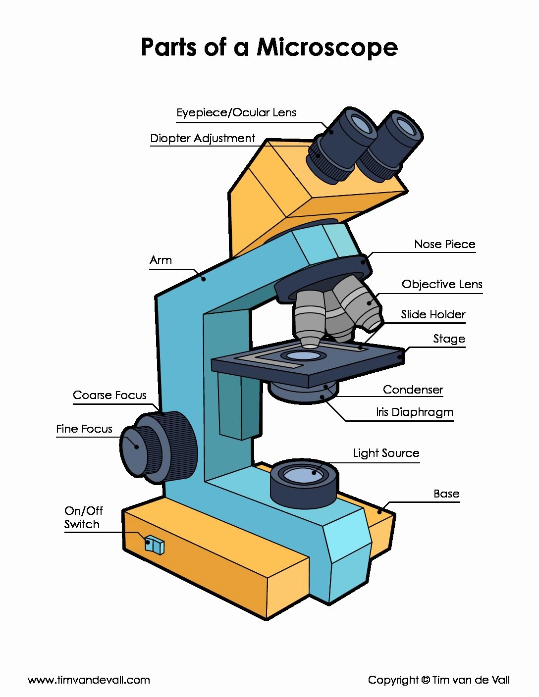 Parts Of A Microscope Worksheet Fresh Microscope Parts Diagram Pdf Science Printables