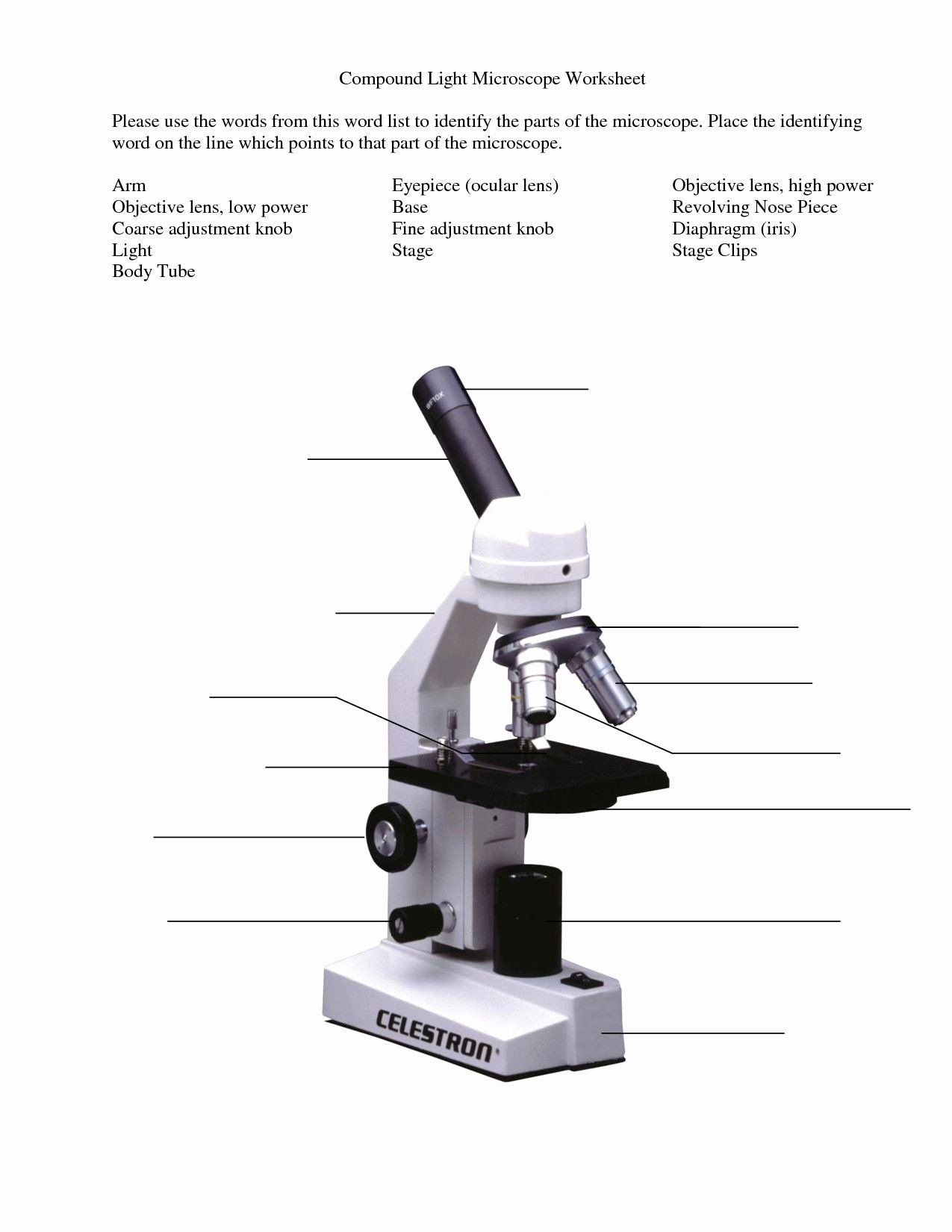 Parts Of A Microscope Worksheet Kids Parts A Microscope Worksheet Microscope Parts and Use