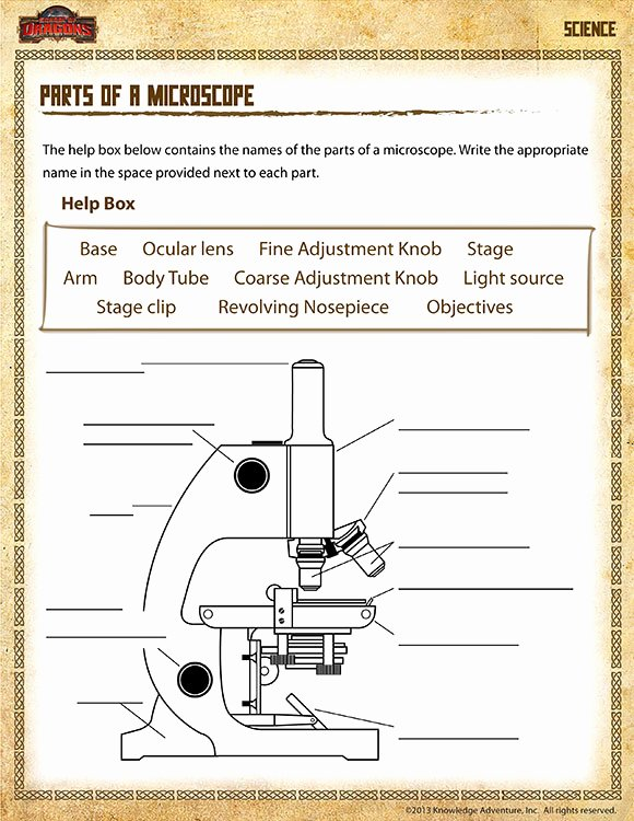 Parts Of A Microscope Worksheet top Parts Of A Microscope View – Free 5th Grade Science Worksheet