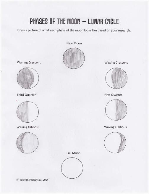 Phases Of the Moon Worksheet Fresh Moon Phases Worksheet Free Printable
