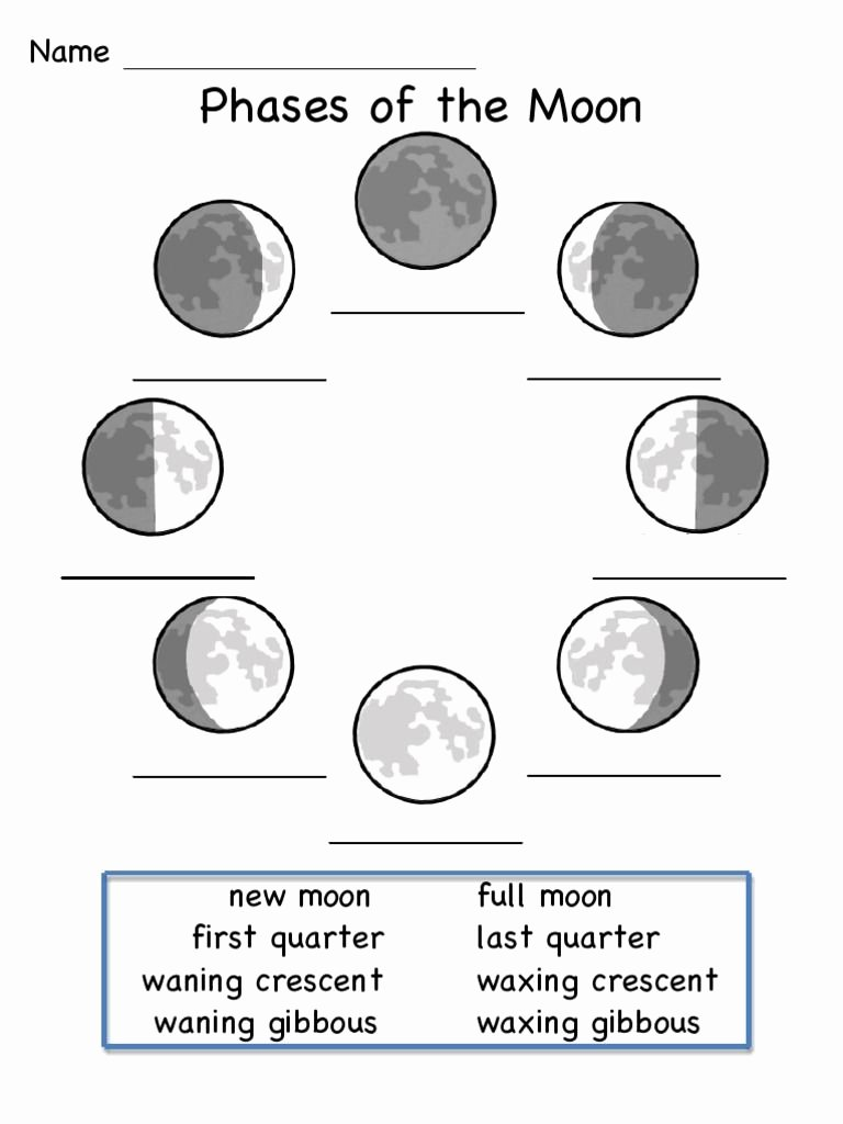 Phases Of the Moon Worksheet Inspirational This is A Worksheet to Show the Phases Of the Moon