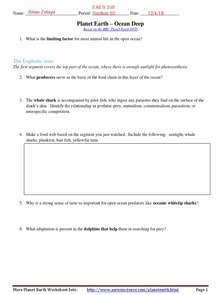 Planet Earth Ocean Deep Worksheet Printable Planet Earth – Ocean Deep the Euphotic Zone