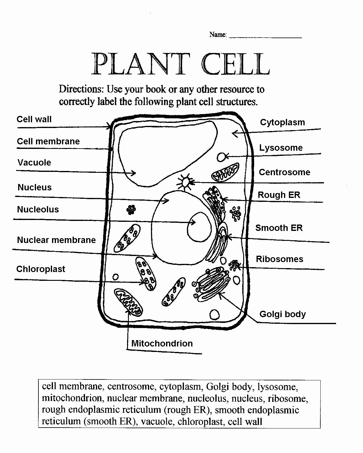 Plant Cell Worksheets to Label top Animal and Plant Cells Worksheet Inspirational 1000