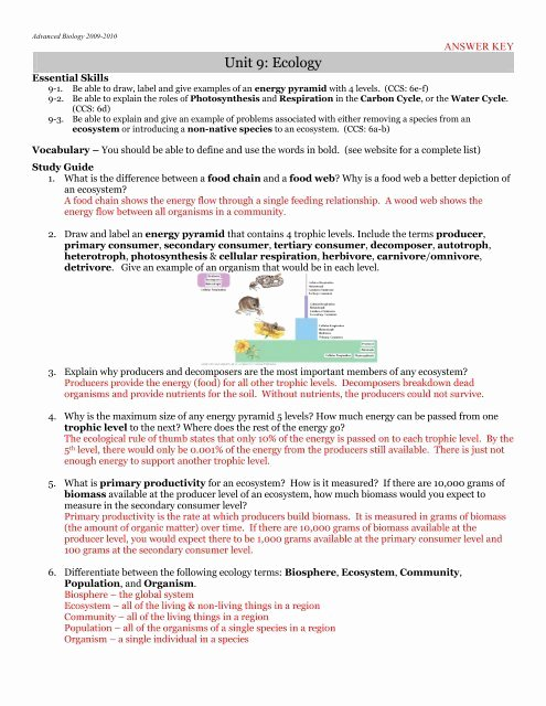 Populations and Communities Worksheet Answers Printable Answer Key