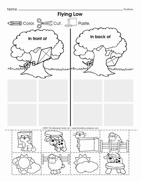 Positional Words Worksheet for Kindergarten Fresh Position Front Back Worksheets