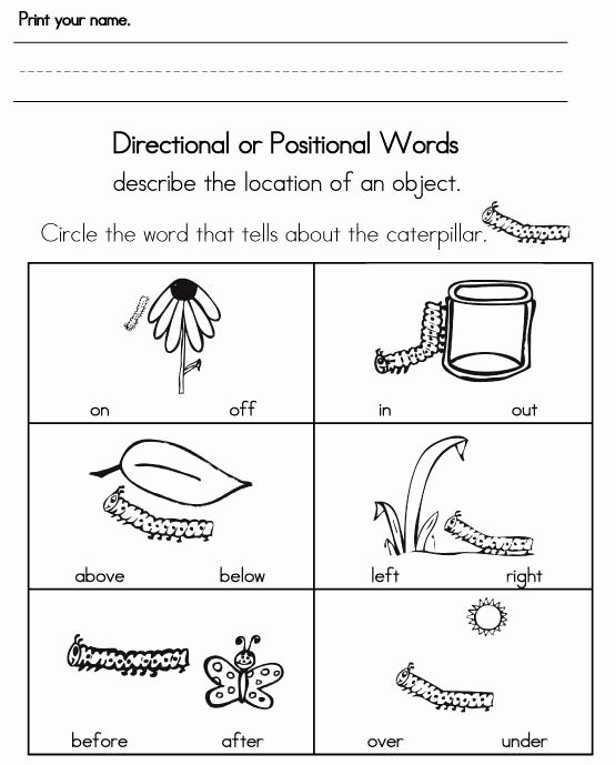 Positional Words Worksheets for Preschool Printable Pin by Ruth Fuentes On Preschool