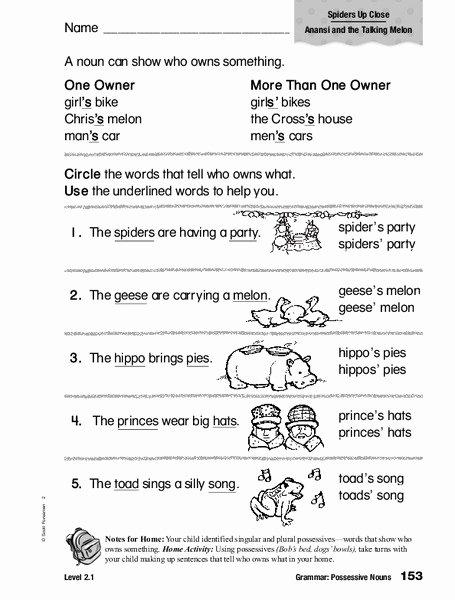 Possessive Noun Worksheet 2nd Grade Printable Grammar Possessive Nouns Worksheet for 1st 2nd Grade