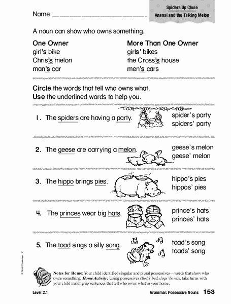 Possessive Nouns Worksheets 2nd Grade Kids Grammar Possessive Nouns Worksheet for 1st 2nd Grade