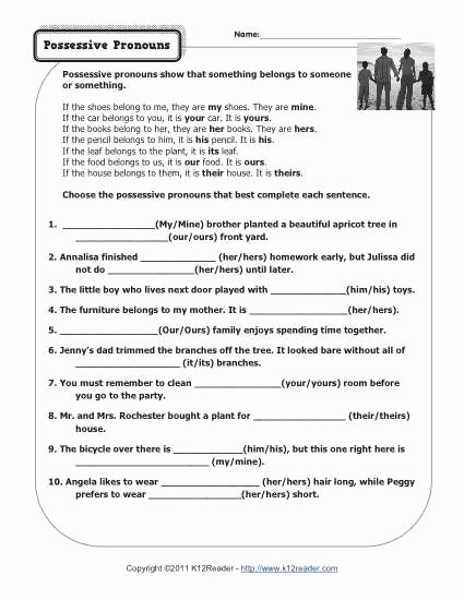 Possessive Pronoun Worksheets 5th Grade Lovely Possessive Pronouns Pronoun Worksheets