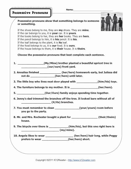 Possessive Pronouns Worksheet 3rd Grade top Possessive Pronouns