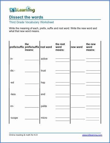 grade 3 prefix suffix root words 1