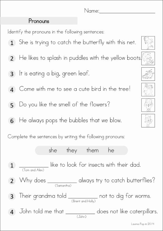 Pronoun Worksheets for 2nd Graders Free Grade Homework An Introduction with Pronoun