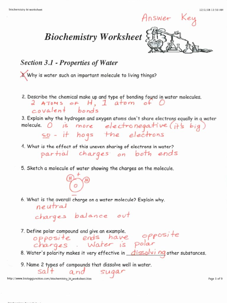 Properties Of Water Worksheet Biology Best Of Key Biochemistry Worksheet Cp