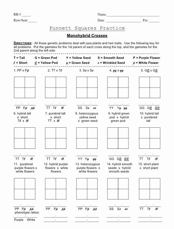 Punnett Square Practice Problems Worksheet Lovely Punnett Square Monohybrid Cross Worksheets
