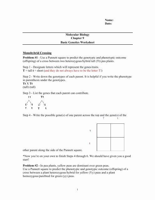 Punnett Square Practice Problems Worksheet Printable Ch 9 Punnet Square Worksheet