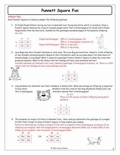 Punnett Square Practice Problems Worksheet top Punnett Square Practice Worksheet Answers Awesome 13 Punnett