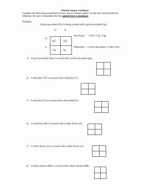 Punnett Square Practice Worksheet Answers Best Of Punnett Square Worksheet