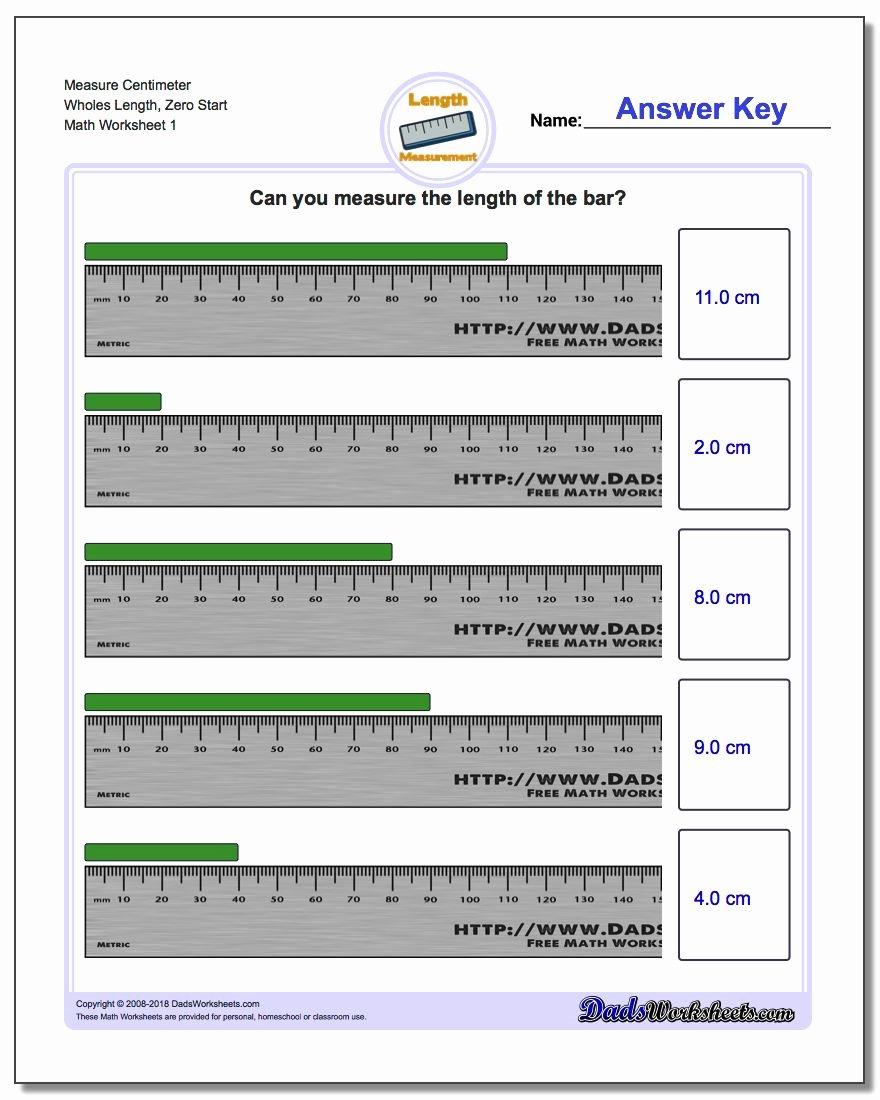 Reading A Metric Ruler Worksheet Fresh Metric Measurement