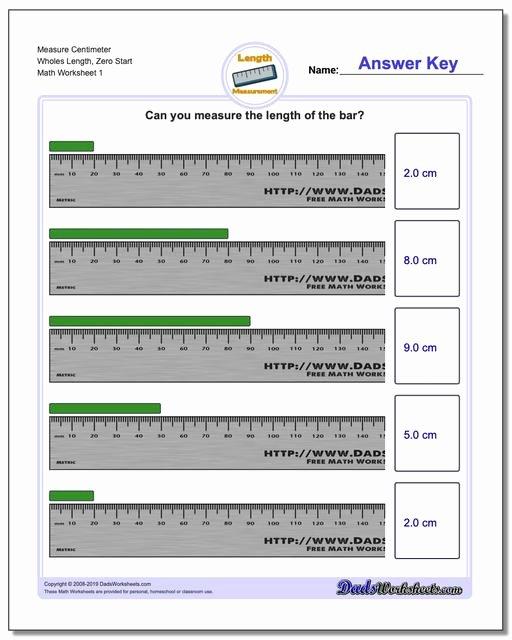 Reading A Metric Ruler Worksheet Lovely Metric Measurement