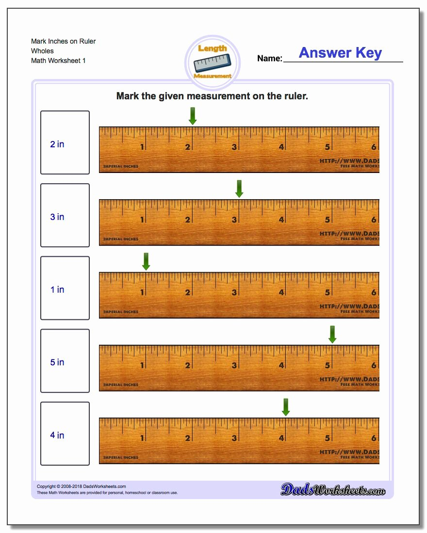 Reading A Tape Measure Worksheet Inspirational Inches Measurement