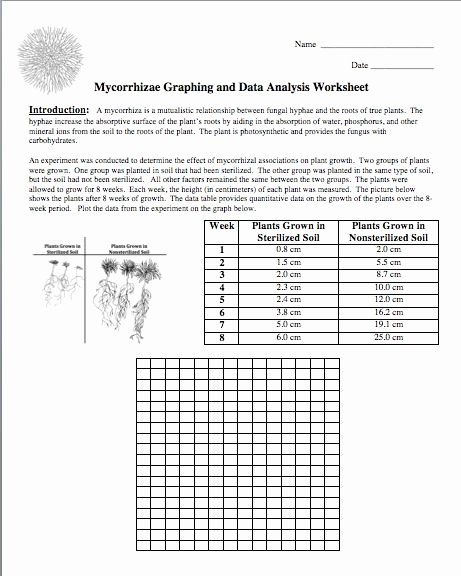 Reading Graphs Worksheets Middle School Lovely 29 Interpreting Graphs Worksheet Middle School Science